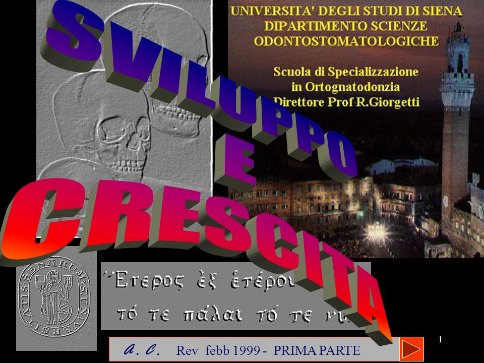 1 A. C. Rev febb 1999 - PRIMA PARTE