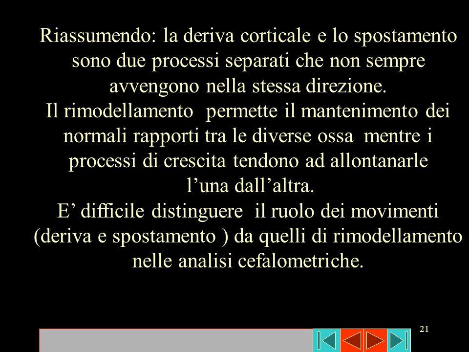21 Riassumendo: la deriva corticale e lo spostamento sono due processi separati che non sempre avvengono nella stessa direzione. Il rimodellamento per