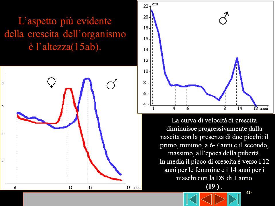 40 86428642 6 12 14 18 anni Laspetto più evidente della crescita dellorganismo è laltezza(15ab). La curva di velocità di crescita diminuisce progressi