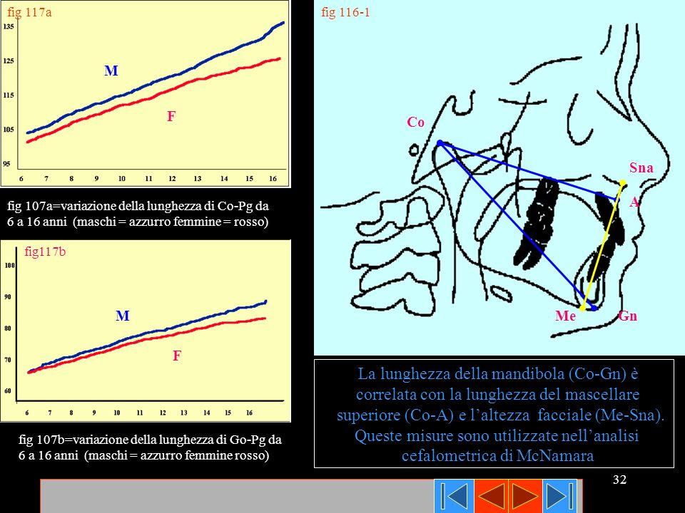 32 fig 116-1 fig117b fig 117a fig 107a=variazione della lunghezza di Co-Pg da 6 a 16 anni (maschi = azzurro femmine = rosso) fig 107b=variazione della