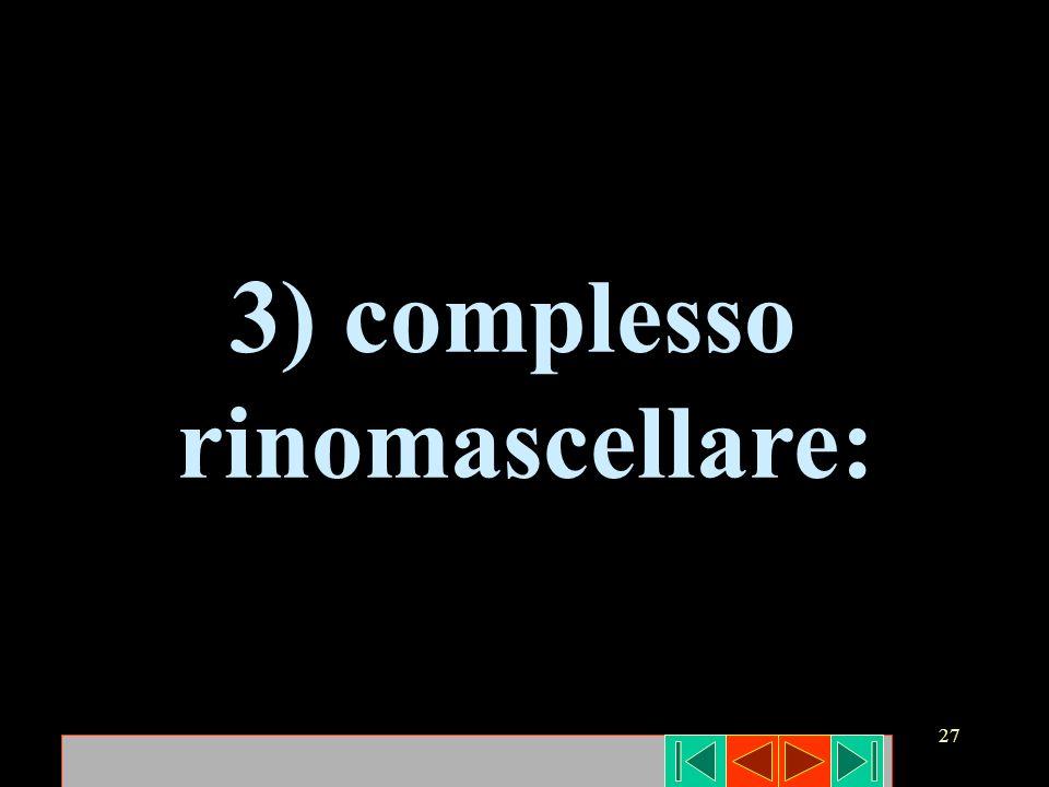 27 3) complesso rinomascellare: