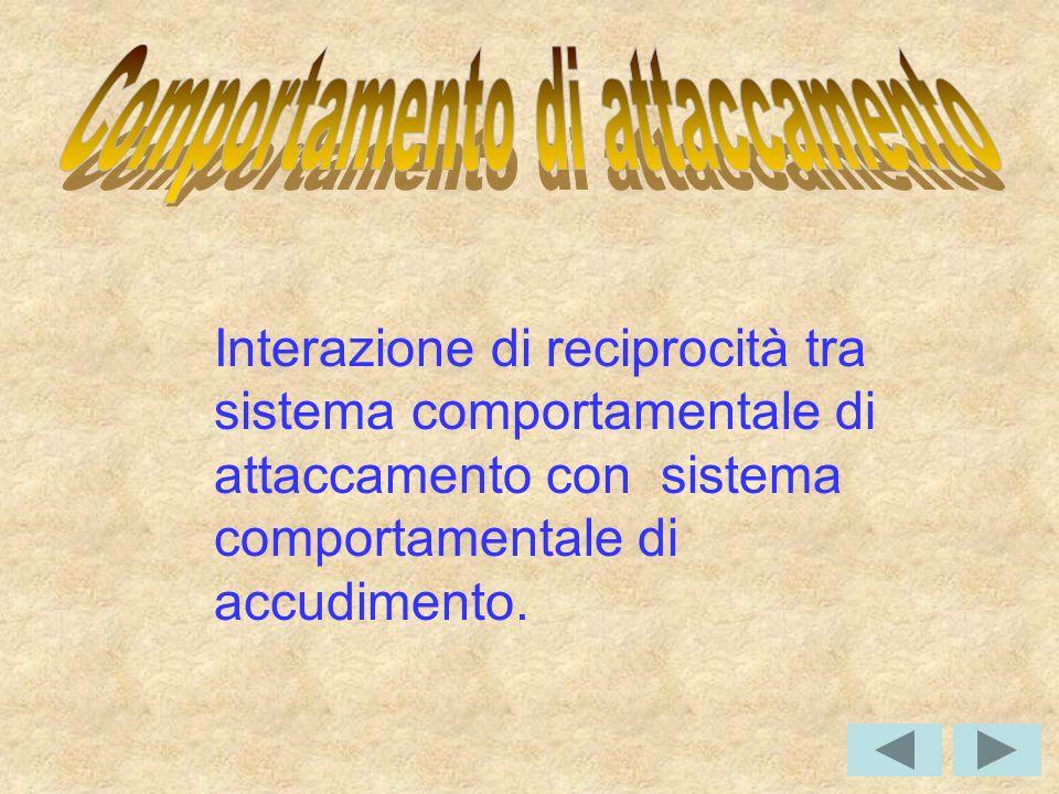 Interazione di reciprocità tra sistema comportamentale di attaccamento con sistema comportamentale di accudimento.
