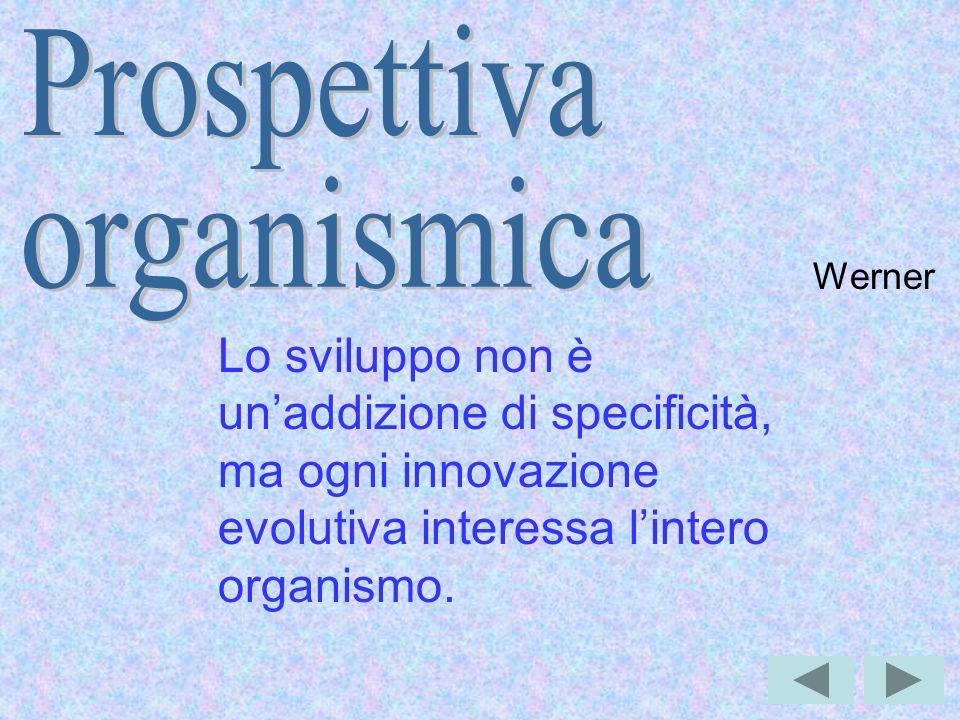 Werner Lo sviluppo non è unaddizione di specificità, ma ogni innovazione evolutiva interessa lintero organismo.