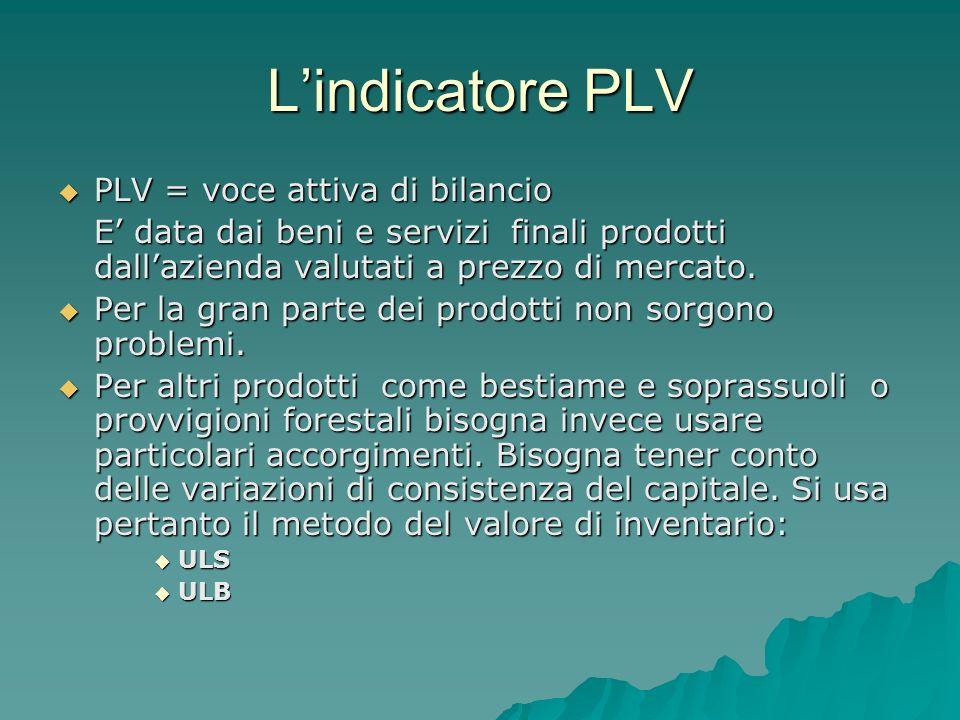 Lindicatore PLV PLV = voce attiva di bilancio PLV = voce attiva di bilancio E data dai beni e servizi finali prodotti dallazienda valutati a prezzo di mercato.