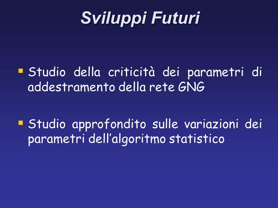 Sviluppi Futuri Studio della criticità dei parametri di addestramento della rete GNG Studio approfondito sulle variazioni dei parametri dellalgoritmo statistico