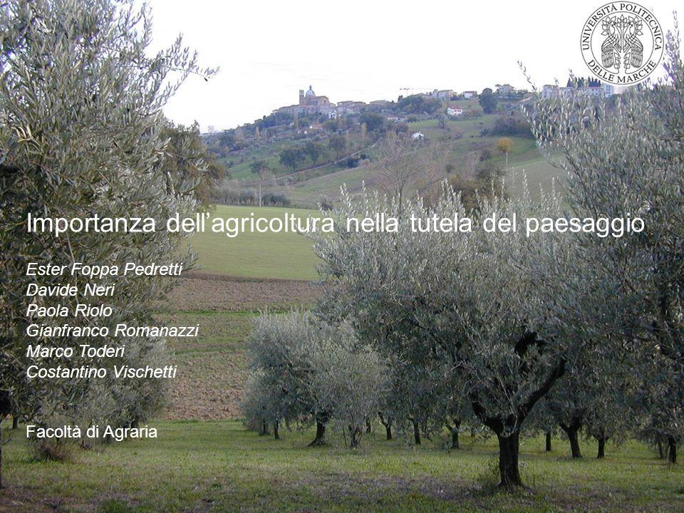 Importanza dellagricoltura nella tutela del paesaggio Ester Foppa Pedretti Davide Neri Paola Riolo Gianfranco Romanazzi Marco Toderi Costantino Vische