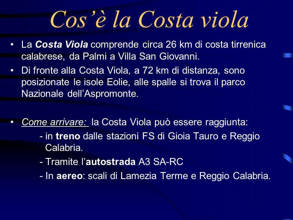 Cosè la Costa viola La Costa Viola comprende circa 26 km di costa tirrenica calabrese, da Palmi a Villa San Giovanni.