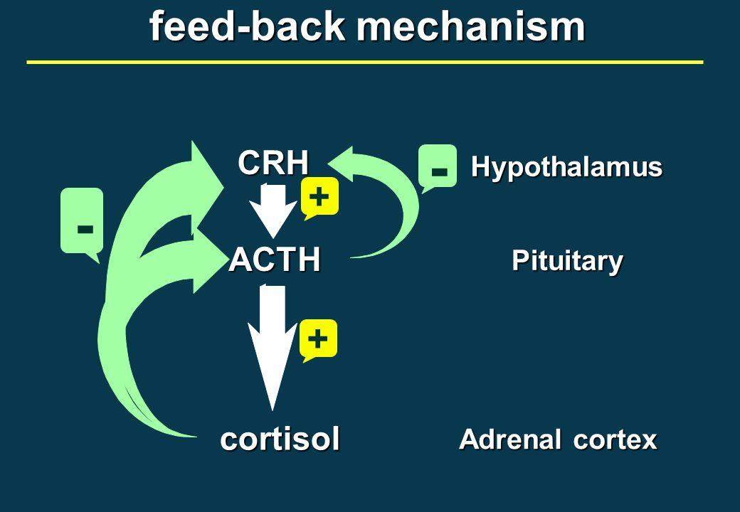 ipotalamoipofisi CRHTRHGnRHGRHSRIF PIF (dopamina) ACTH TSH FSH LH GH PRL ghiandole bersaglio