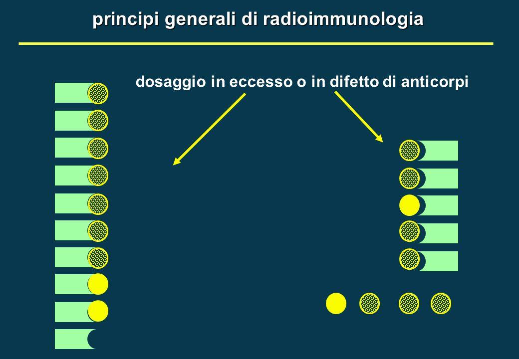 dosaggio immunoradiometrico (IRMA) (tipo sandwitch in fase solida)