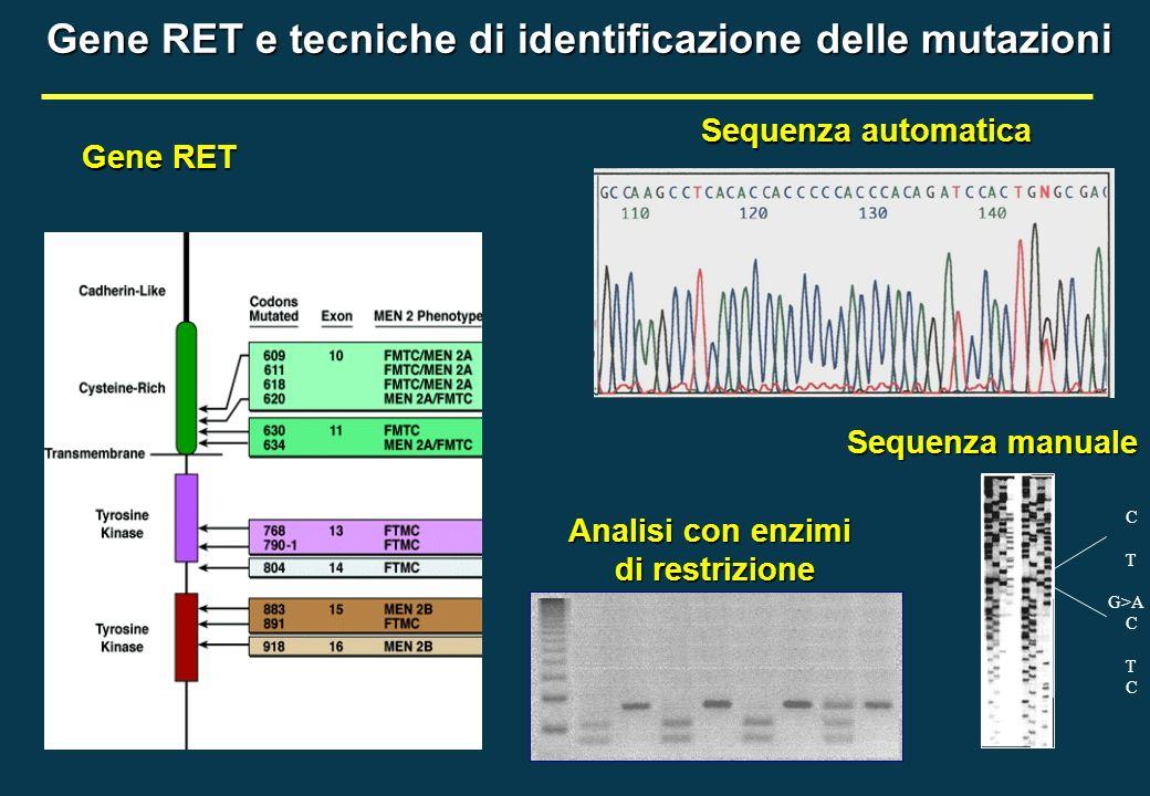 C T G>A C T C Gene RET e tecniche di identificazione delle mutazioni Gene RET Sequenza automatica Sequenza manuale Analisi con enzimi di restrizione