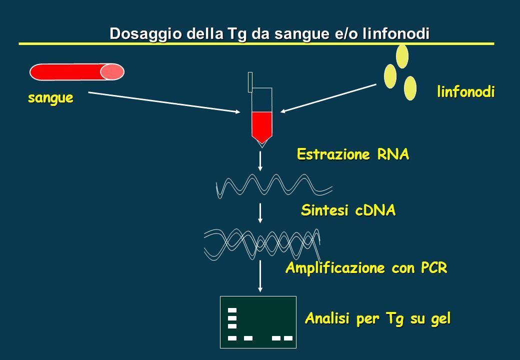 Dosaggio della Tg da sangue e/o linfonodi sangue linfonodi Estrazione RNA Sintesi cDNA Amplificazione con PCR Analisi per Tg su gel