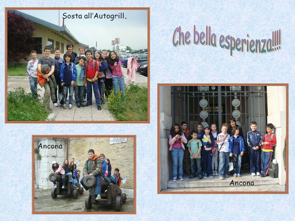 Sosta allAutogrill. Ancona