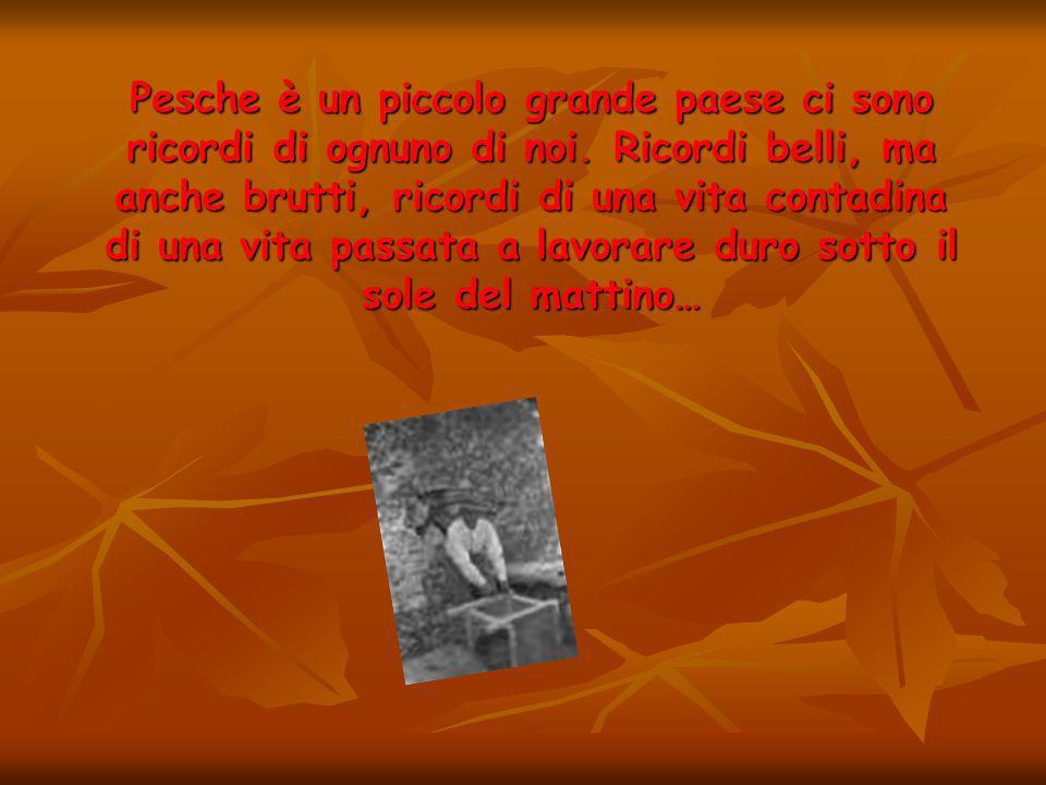 LE FONTI DI PESCHE!!!