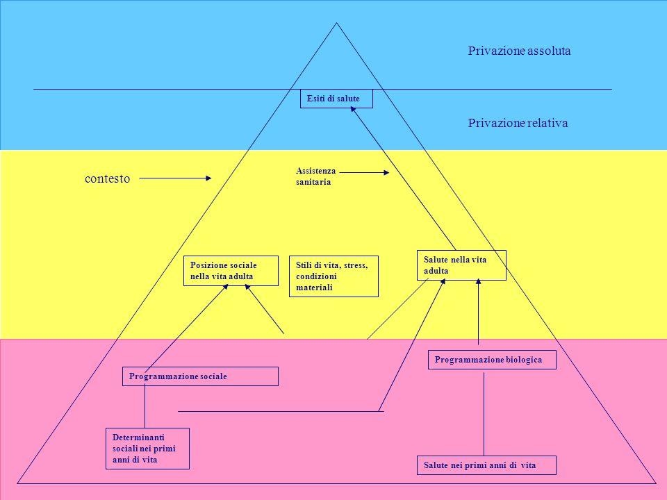 22/02/2014Collegio IPASVI Ferrara28 Privazione assoluta Esiti di salute Privazione relativa contesto Assistenza sanitaria Posizione sociale nella vita