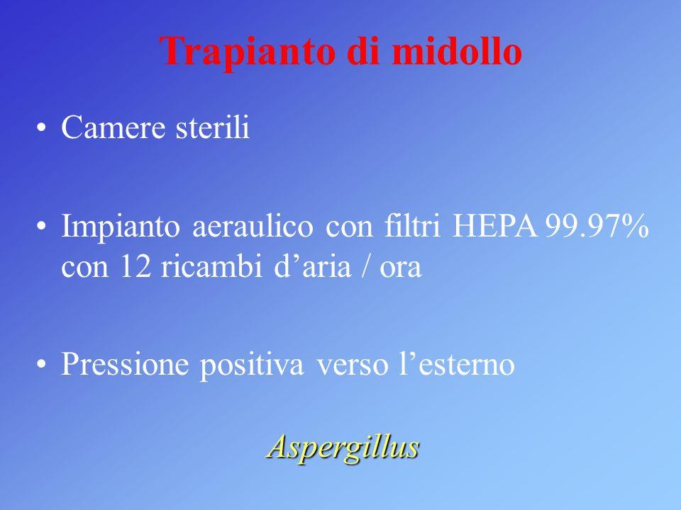 Trapianto di midollo Camere sterili Impianto aeraulico con filtri HEPA 99.97% con 12 ricambi daria / ora Pressione positiva verso lesterno Aspergillus