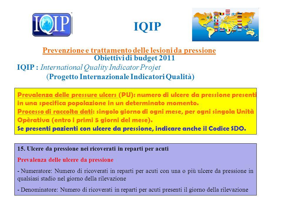 IQIP Prevenzione e trattamento delle lesioni da pressione Obiettivi di budget 2011 IQIP : International Quality Indicator Projet (Progetto Internazion