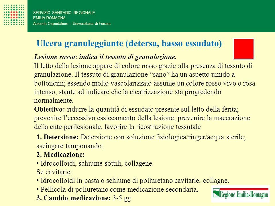 SERVIZIO SANITARIO REGIONALE EMILIA-ROMAGNA Azienda Ospedaliero – Universitaria di Ferrara Ulcera granuleggiante (detersa, basso essudato) Lesione ros