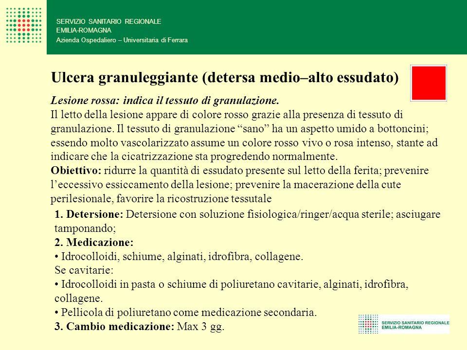 SERVIZIO SANITARIO REGIONALE EMILIA-ROMAGNA Azienda Ospedaliero – Universitaria di Ferrara Ulcera granuleggiante (detersa medio–alto essudato) Lesione
