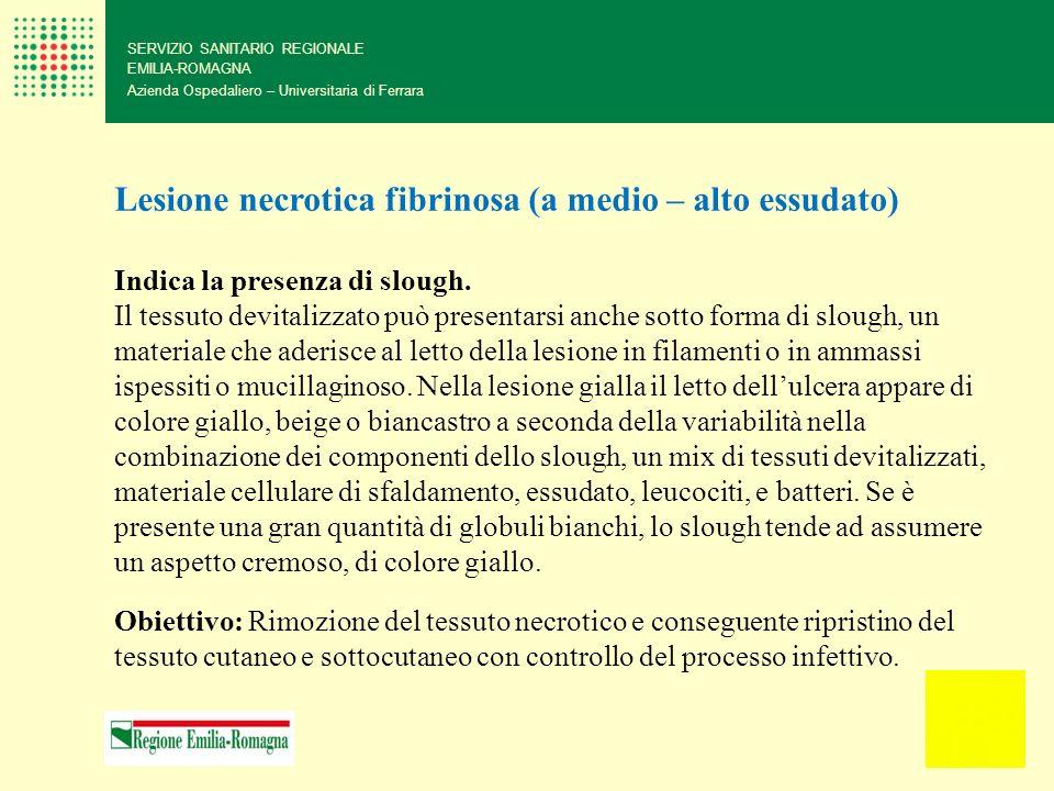 SERVIZIO SANITARIO REGIONALE EMILIA-ROMAGNA Azienda Ospedaliero – Universitaria di Ferrara Lesione necrotica fibrinosa (a medio – alto essudato) Indic