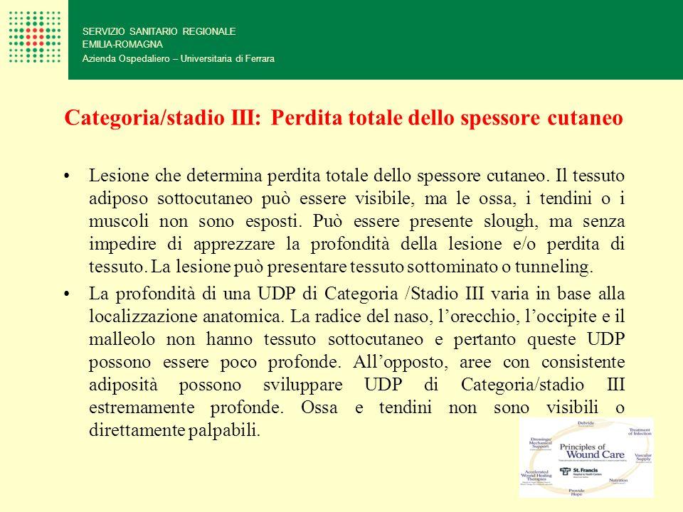 Categoria/stadio III: Perdita totale dello spessore cutaneo SERVIZIO SANITARIO REGIONALE EMILIA-ROMAGNA Azienda Ospedaliero – Universitaria di Ferrara