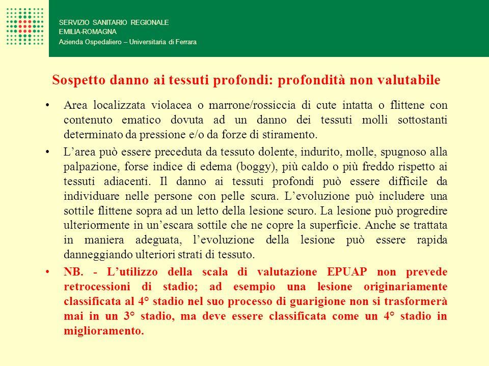 Sospetto danno ai tessuti profondi: profondità non valutabile SERVIZIO SANITARIO REGIONALE EMILIA-ROMAGNA Azienda Ospedaliero – Universitaria di Ferra