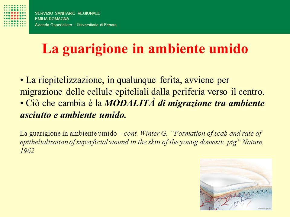 SERVIZIO SANITARIO REGIONALE EMILIA-ROMAGNA Azienda Ospedaliero – Universitaria di Ferrara La riepitelizzazione, in qualunque ferita, avviene per migr
