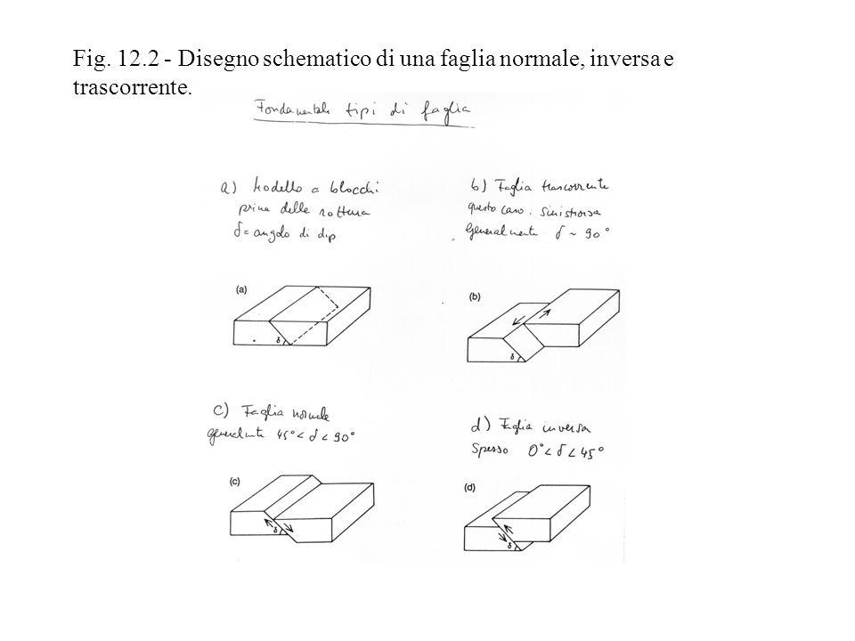 Fig. 12.2 - Disegno schematico di una faglia normale, inversa e trascorrente.