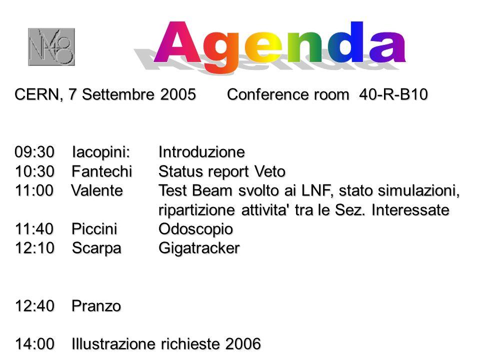 CERN, 7 Settembre 2005 Conference room 40-R-B10 09:30 Iacopini:Introduzione 10:30 Fantechi Status report Veto 11:00 Valente Test Beam svolto ai LNF, stato simulazioni, ripartizione attivita tra le Sez.