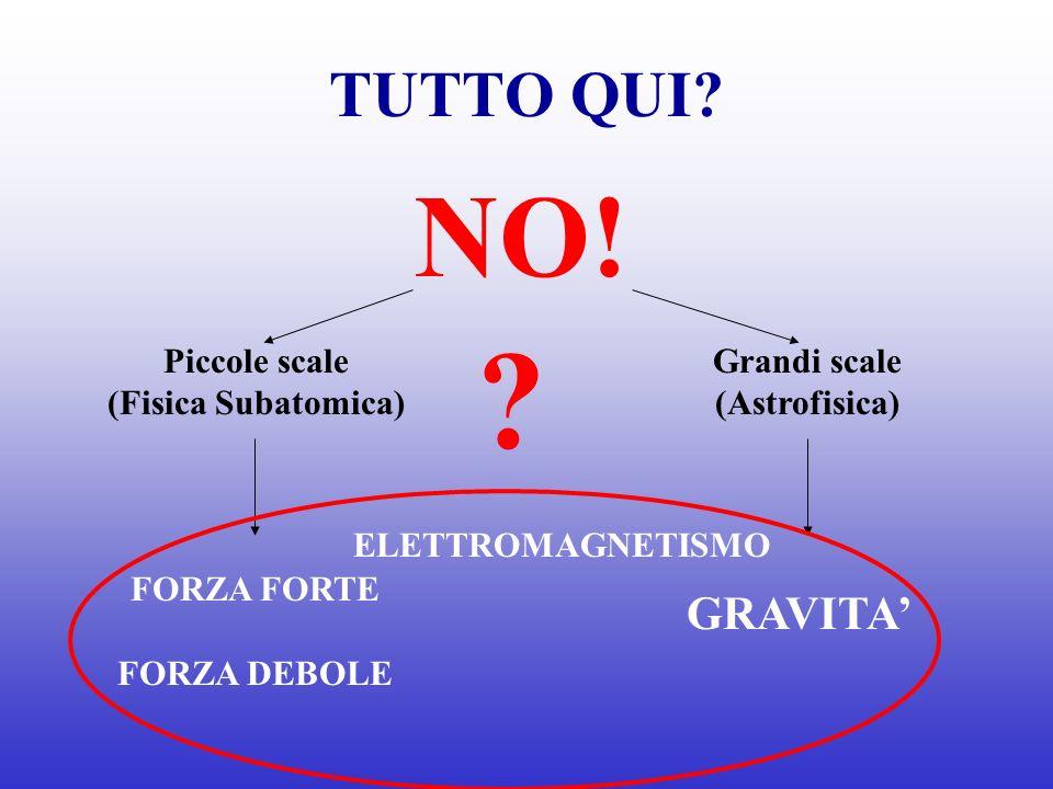 TUTTO QUI? NO! Grandi scale (Astrofisica) Piccole scale (Fisica Subatomica) FORZA FORTE FORZA DEBOLE GRAVITA ELETTROMAGNETISMO ?