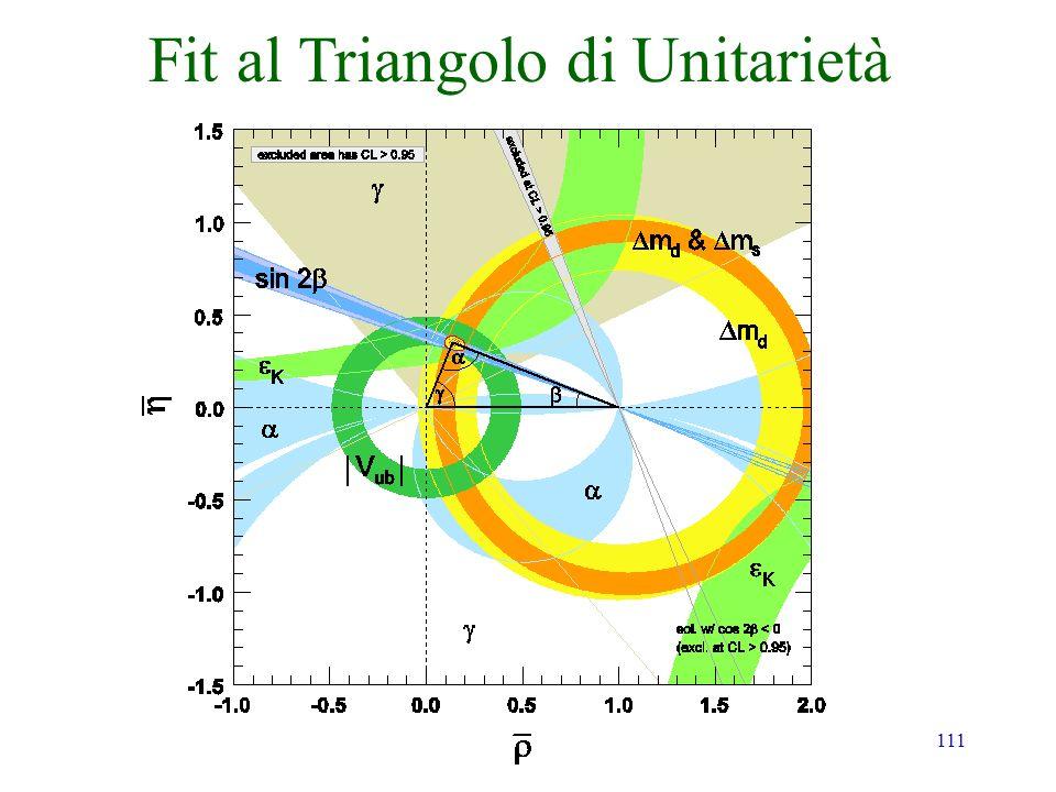 111 Fit al Triangolo di Unitarietà PDG2008