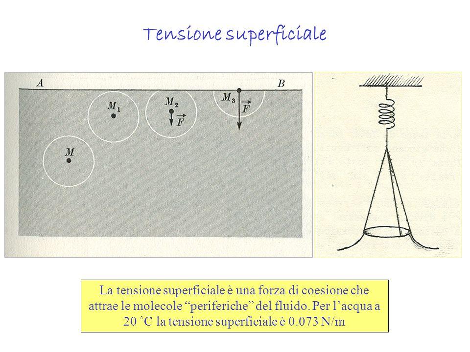 Tensione superficiale La tensione superficiale è una forza di coesione che attrae le molecole periferiche del fluido. Per lacqua a 20 ˚C la tensione s