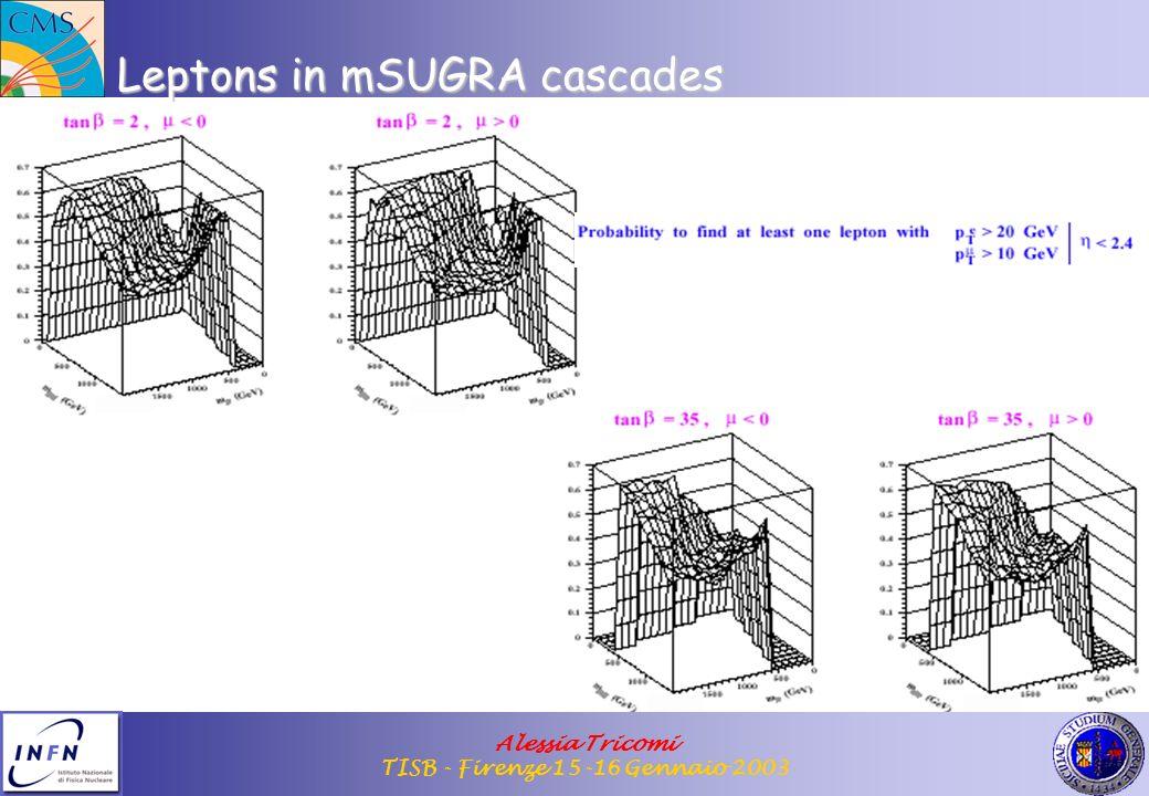 Alessia Tricomi TISB - Firenze 15-16 Gennaio 2003 Leptons in mSUGRA cascades