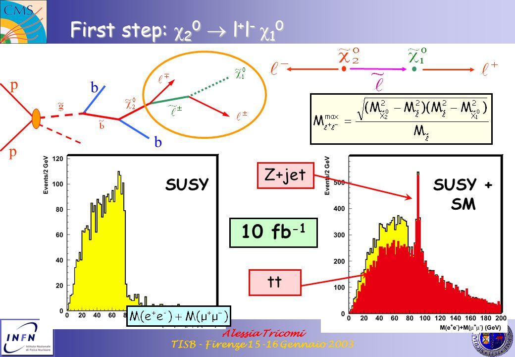 Alessia Tricomi TISB - Firenze 15-16 Gennaio 2003 First step: 2 0 l + l - 1 0 p p b b SUSY SUSY + SM 10 fb -1 Z+jet tt