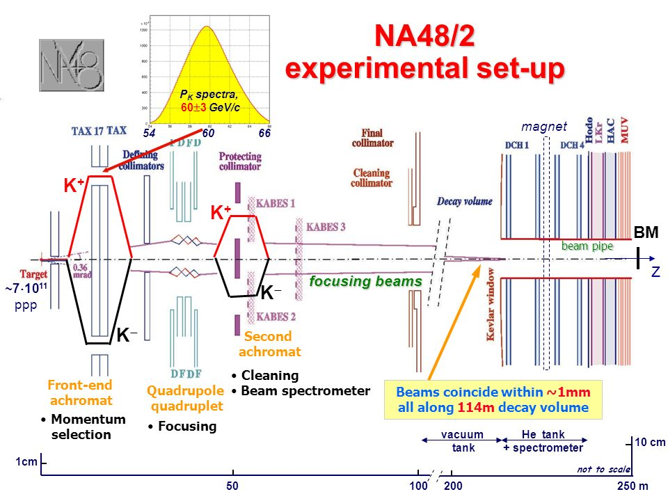 NA48/2 experimental set-up 1cm 50100 10 cm 200250 m He tank + spectrometer Front-end achromat Momentum selection Quadrupole quadruplet Focusing Second achromat Cleaning Beam spectrometer ~7 10 11 ppp K+K+ K Beams coincide within ~1mm all along 114m decay volume focusing beams BM z magnet vacuum tank not to scale K+K+ K beam pipe P K spectra, 60 3 GeV/c 54 60 66