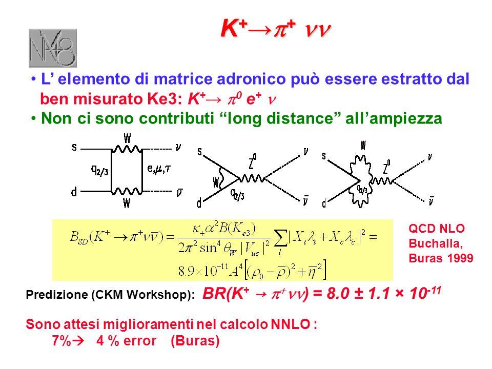 Predizione (CKM Workshop): BR(K + ) = 8.0 ± 1.1 × 10 -11 Sono attesi miglioramenti nel calcolo NNLO : 7% 4 % error (Buras) K + + K + + L elemento di matrice adronico può essere estratto dal ben misurato Ke3: K + 0 e + Non ci sono contributi long distance allampiezza QCD NLO Buchalla, Buras 1999