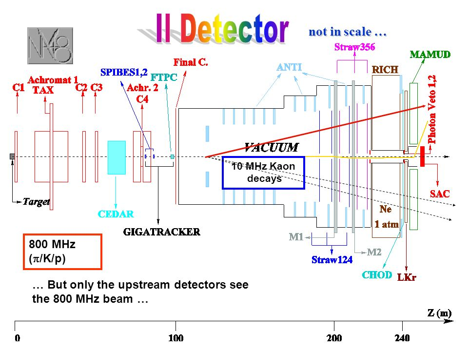 10 MHz Kaon decays 800 MHz ( /K/p) … But only the upstream detectors see the 800 MHz beam … not in scale …
