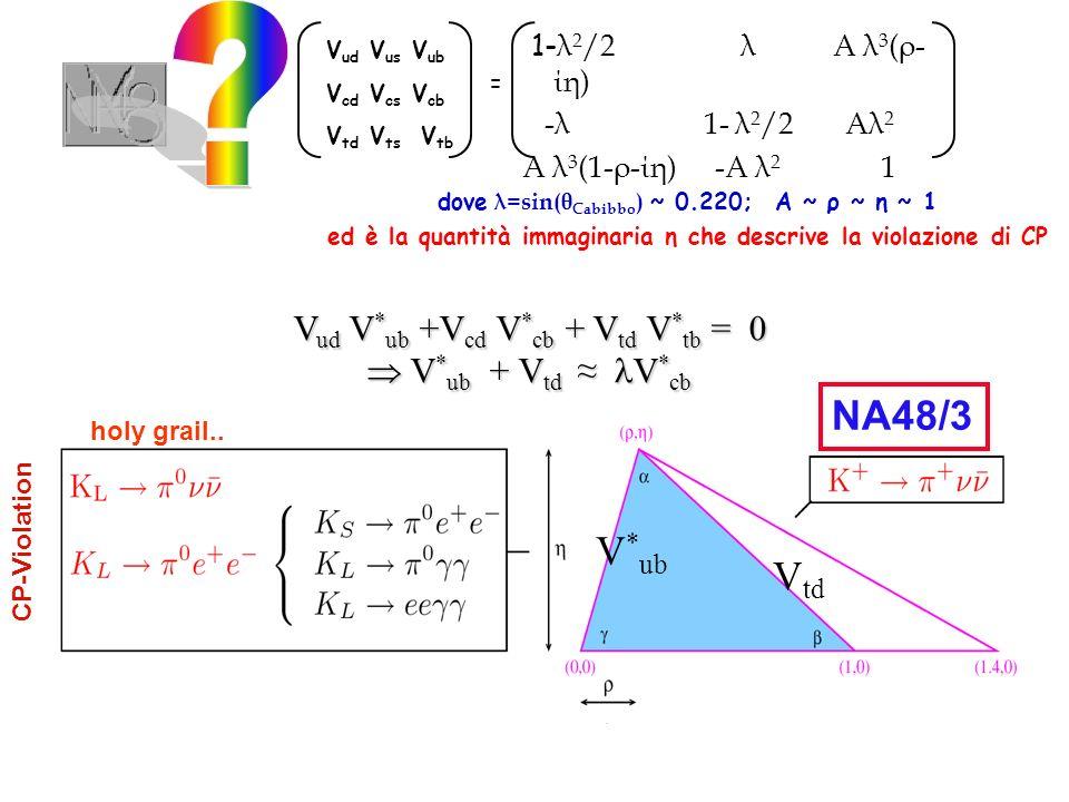 La PT prevede che questo decadimento origini da tre diverse ampiezze (CP -1) (CP +1) Indirect CPV e+e+e+e+ e-e-e-e-