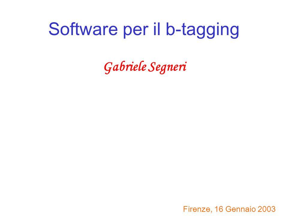Software per il b-tagging Gabriele Segneri Firenze, 16 Gennaio 2003
