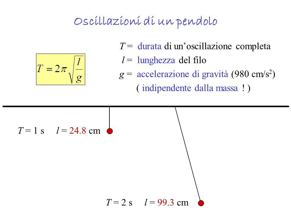 Oscillazioni di un pendolo T = durata di unoscillazione completa l = lunghezza del filo g = accelerazione di gravità (980 cm/s 2 ) ( indipendente dall