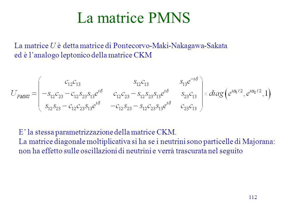 112 La matrice PMNS La matrice U è detta matrice di Pontecorvo-Maki-Nakagawa-Sakata ed è lanalogo leptonico della matrice CKM E la stessa parametrizzazione della matrice CKM.