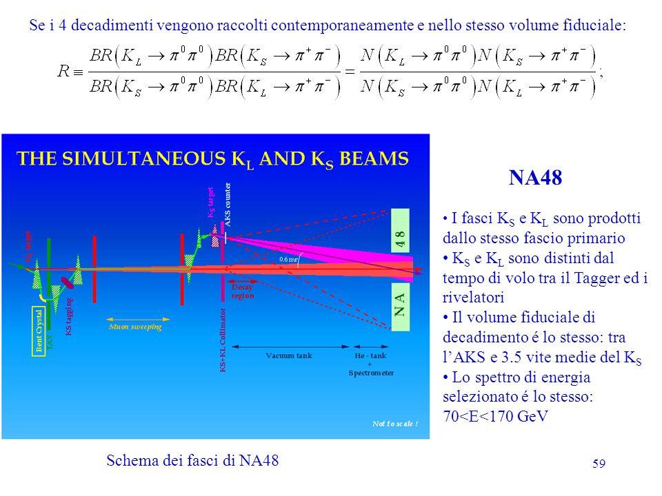 59 I fasci K S e K L sono prodotti dallo stesso fascio primario K S e K L sono distinti dal tempo di volo tra il Tagger ed i rivelatori Il volume fidu