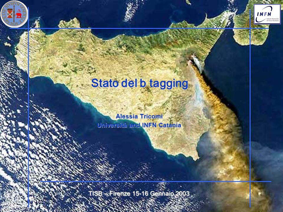 Stato del b tagging Stato del b tagging Alessia Tricomi Università and INFN Catania TISB – Firenze 15-16 Gennaio 2003
