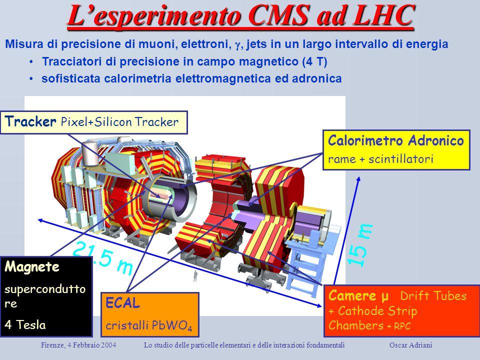 Firenze, 4 Febbraio 2004Lo studio delle particelle elementari e delle interazioni fondamentali Oscar Adriani Tracker Pixel+Silicon Tracker Calorimetro