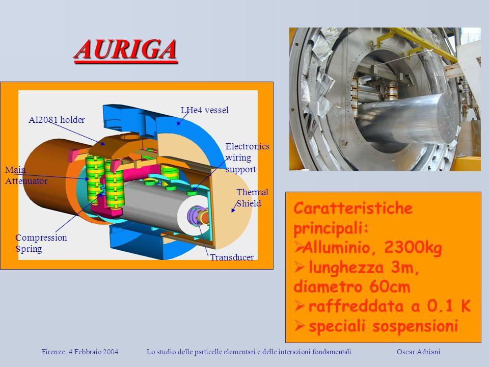 Firenze, 4 Febbraio 2004Lo studio delle particelle elementari e delle interazioni fondamentali Oscar Adriani Transducer Electronics wiring support LHe