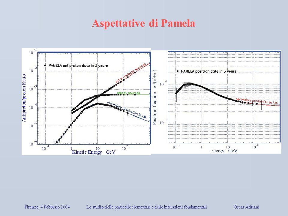 Firenze, 4 Febbraio 2004Lo studio delle particelle elementari e delle interazioni fondamentali Oscar Adriani Aspettative di Pamela