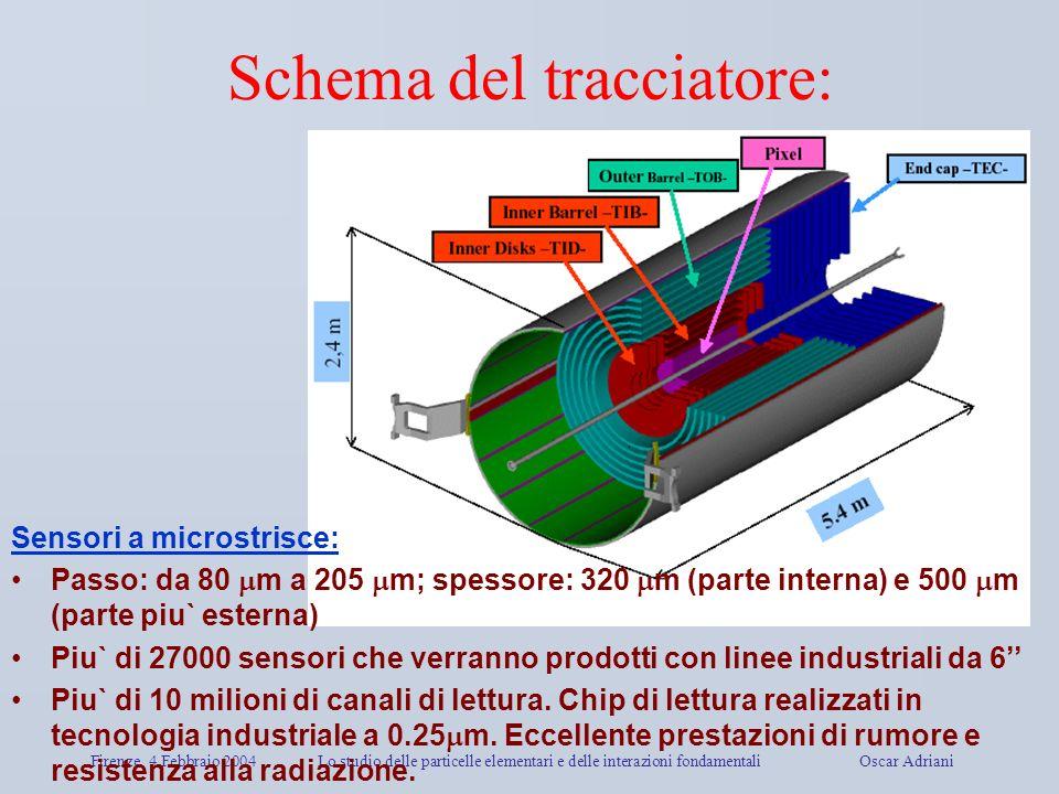 Firenze, 4 Febbraio 2004Lo studio delle particelle elementari e delle interazioni fondamentali Oscar Adriani Schema del tracciatore: Sensori a microst