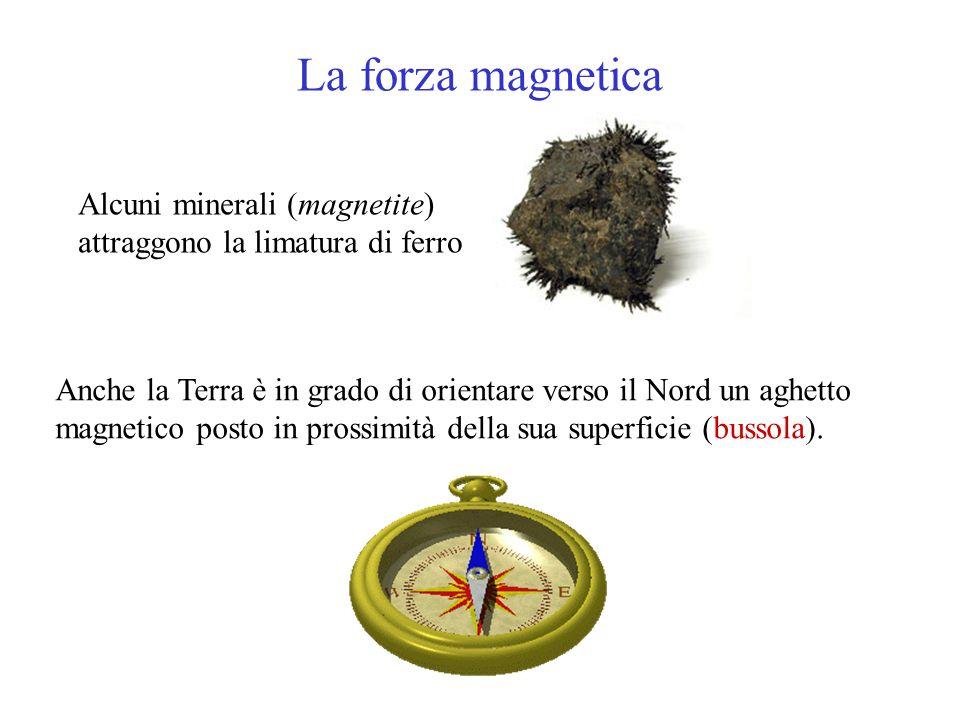 La forza magnetica Anche la Terra è in grado di orientare verso il Nord un aghetto magnetico posto in prossimità della sua superficie (bussola). Alcun