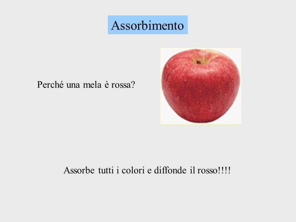 Assorbimento Perché una mela è rossa? Assorbe tutti i colori e diffonde il rosso!!!!