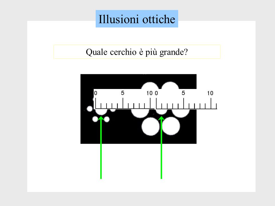 Illusioni ottiche Quale cerchio è più grande?