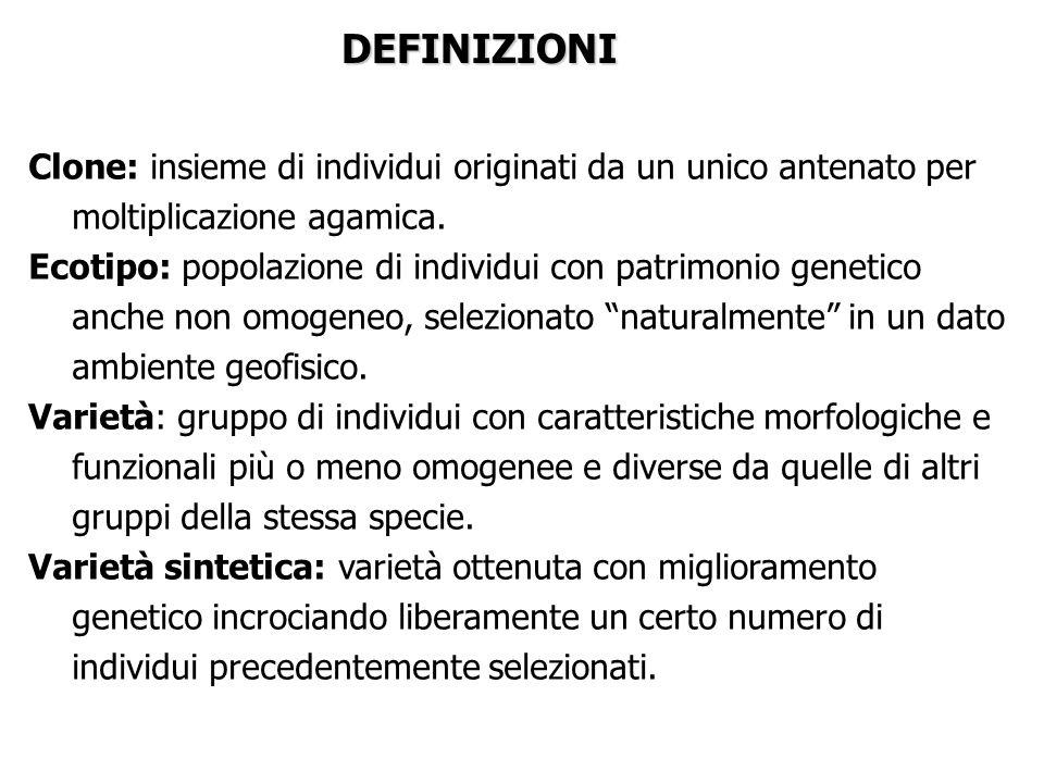 ALTRI METODI DI PROPAGAZIONE AGAMICA 1.DIVISIONE DEL CESPO 1.